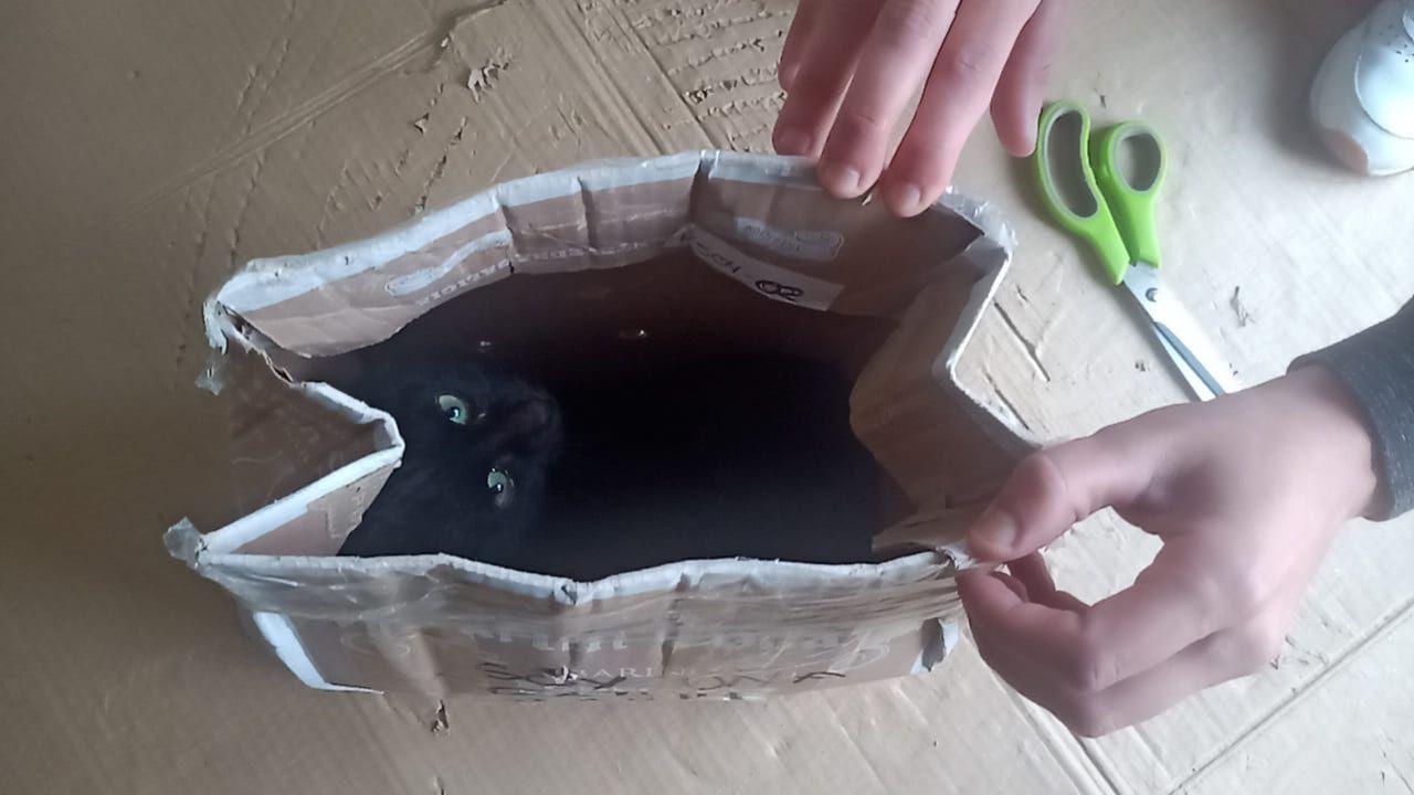 Trampa encontrada el pasado 15 de febrero en el paseo que va a Outariz