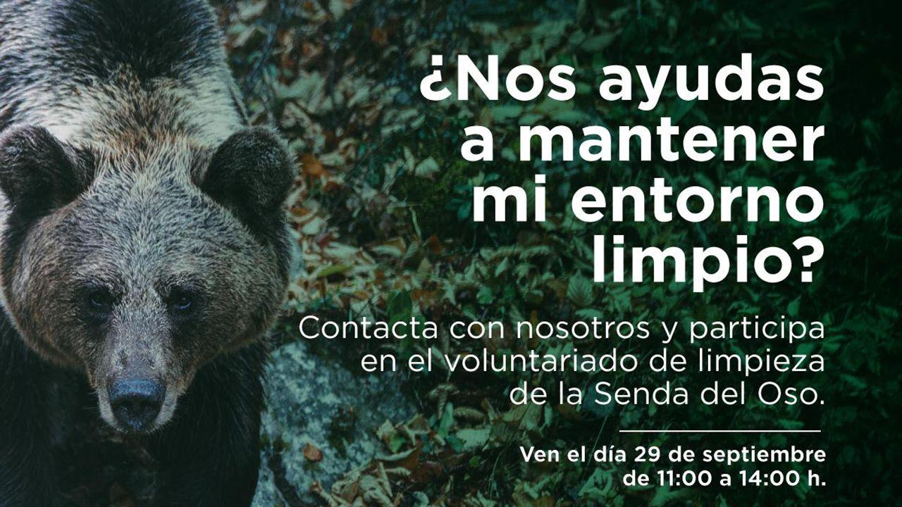 FOA organiza una actividad para limpiar la senda del oso