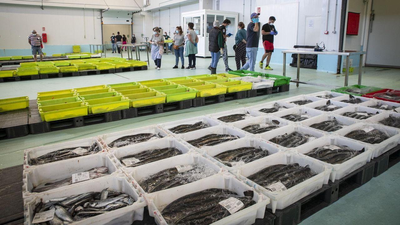 Lonja de pescado de Ribeira