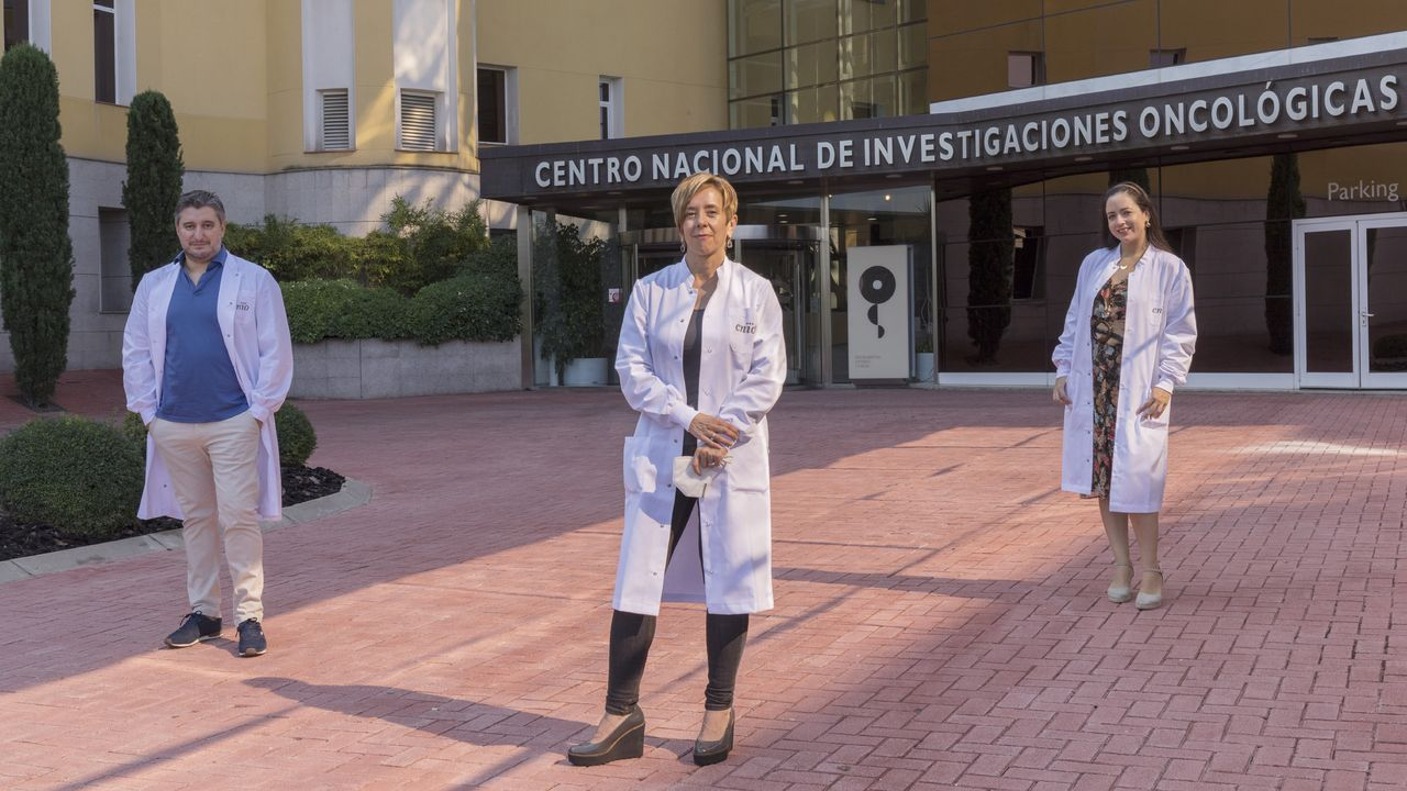 David Olmeda, Marisol Soengas y Daniela Cerezo