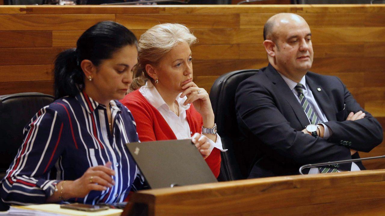 La presidenta de Foro, Cristina Coto (c), ha anunciado hoy su decisión de dimitir al frente del partido tras ser desautorizada por la Comisión Directiva de esta formación en relación a su decisión de cambiar la situación laboral de una de las asesoras del grupo parlamentario. En la imagen Coto y los diputados de Foro, Carmen Fernández (i) y Pedro Leal (d), durante el pleno de la Junta General tras anunciar su dimisión