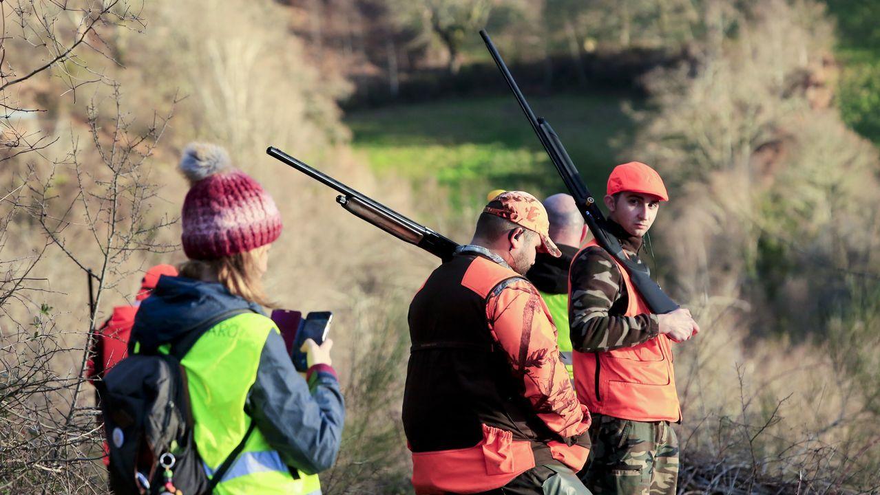 Polémica por las cacerías de zorros en Lugo