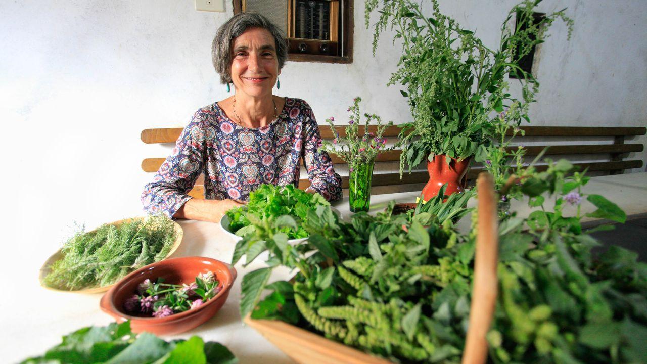 Un recorrido en imágenes por el camino de Cibrisqueiros a San Cosmede.Clara Gutiérrez con algunas de las plantas silvestres que usa en sus talleres gastronómicos