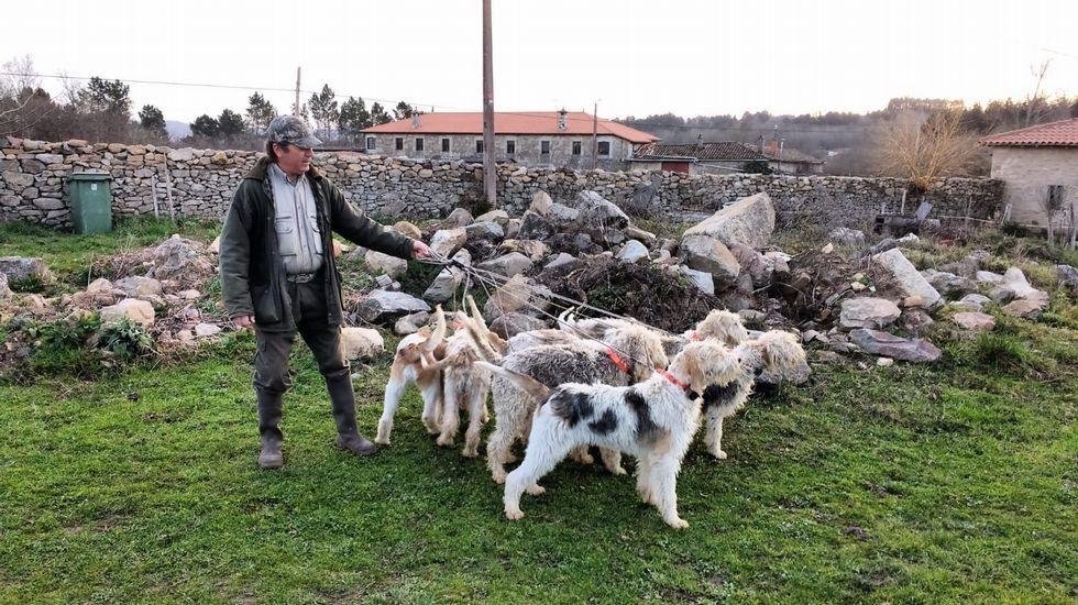 Recorrido en imágenes por el Camiño da Empardeada.Gerardo González, cazador de Sober, con perros de raza grifón vendeano