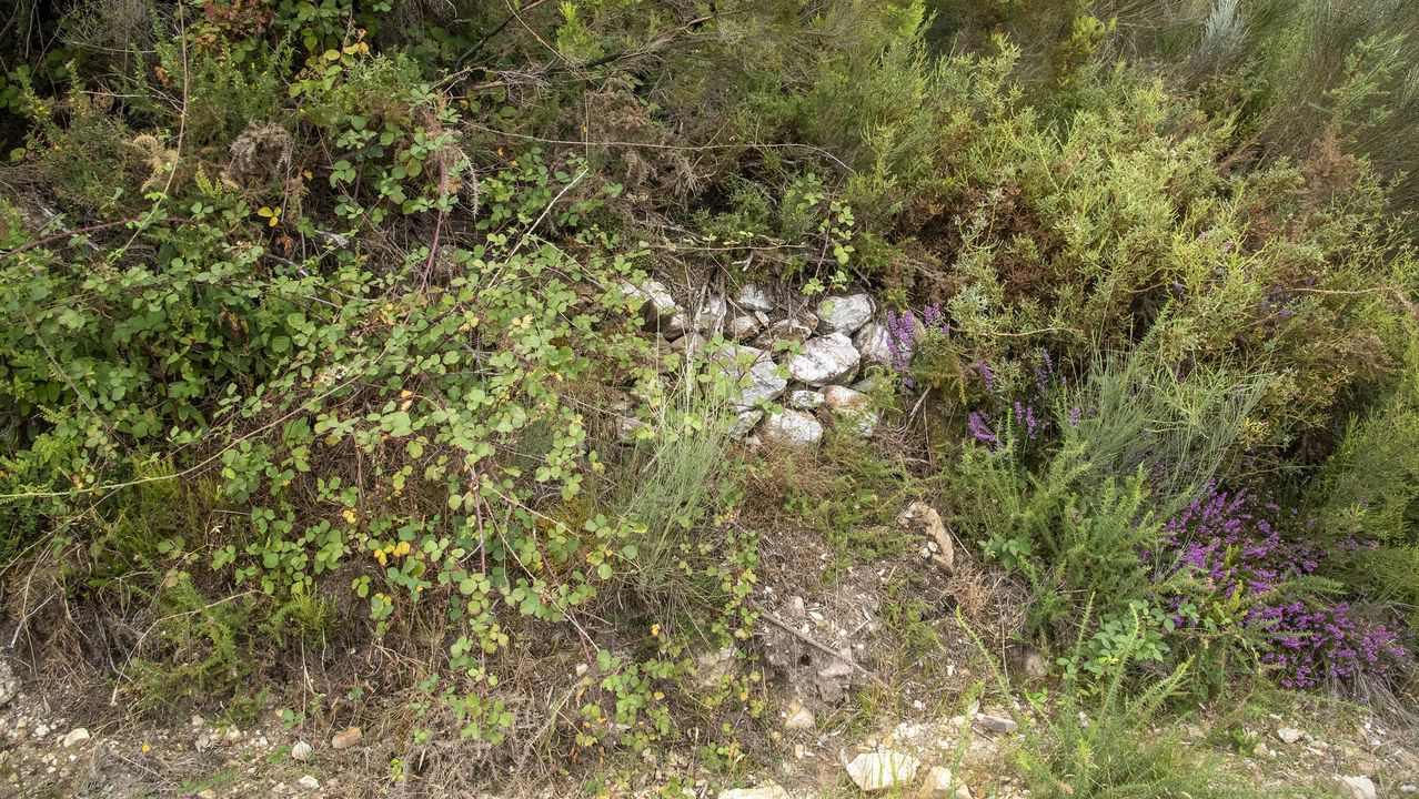 Piedras en un paraje donde al parecer existió unantiguo horno