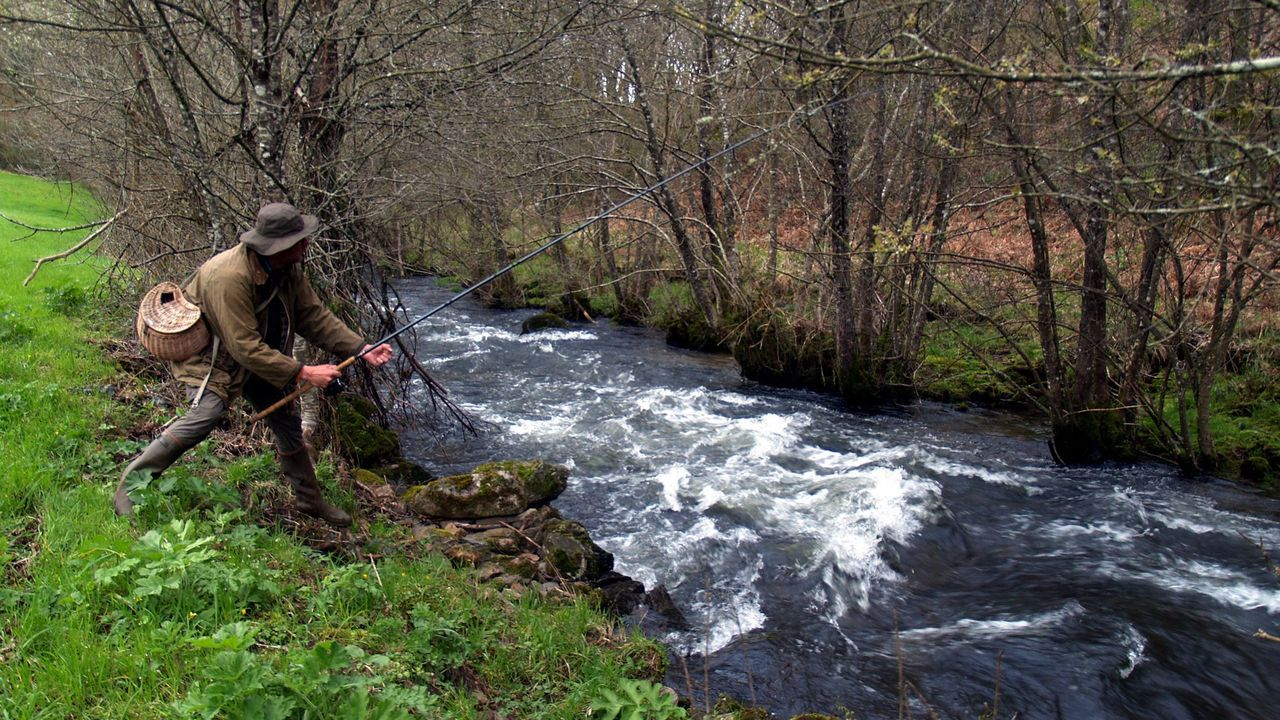 salmón, pescador, campanu, pesca.Un jabalí abatido por la Sociedad parraguesa de caza