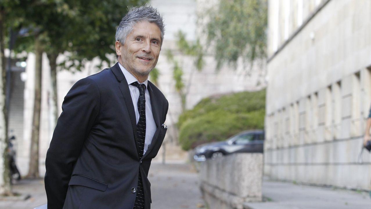 Ministro del Interior: Fernando Grande-Marlaska