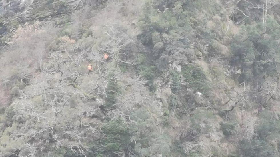 En la imagen, se ve a los miembros del GES (vestidos de naranja) descendiendo por la ladera. El perro, de color blanco, está a su derecha