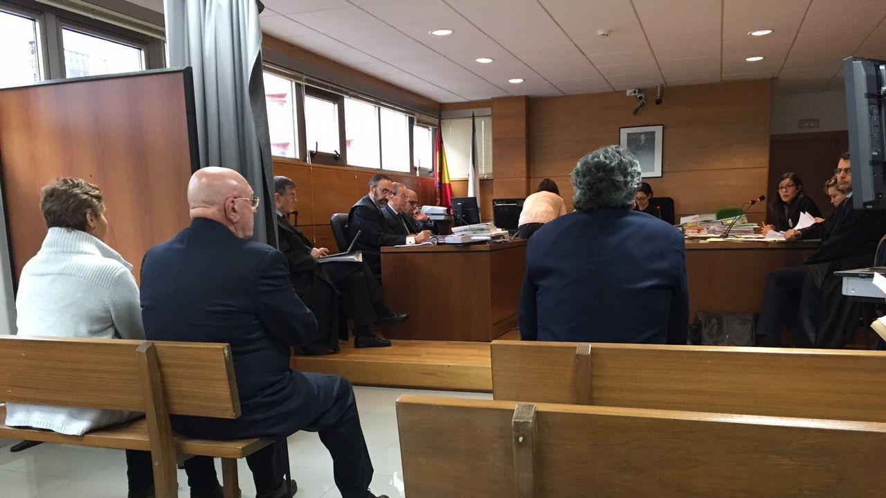 Cremos que na Coruña podemos ser chave de goberno e poñer condicións .COIROS ASTURIANOS APRENDEN A QUITAR NIDOS DE VELUTINASEN COIROS CESAR DELGADO