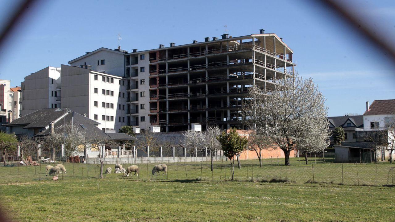 Solo una parte de los bloques de viviendas, la que aparece a la izquierda en la fotografía, pudo completarse antes del embargo