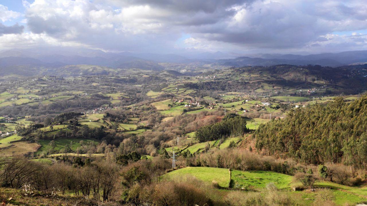 Vistas desde el Monte Naranco, en Oviedo, al paso de una ruta de senderismo.