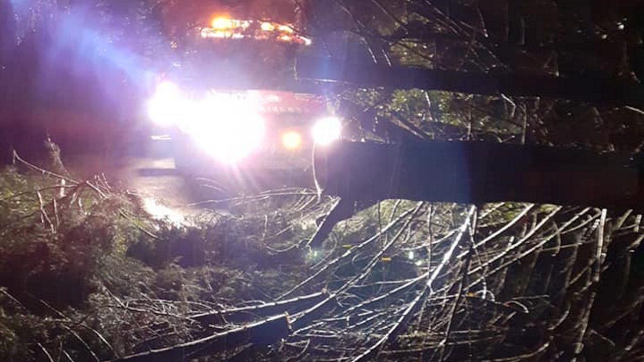 Bomberos y equipo de emergencias de Boiro retiraron un árbol que el viento derribó en Abanqueiro