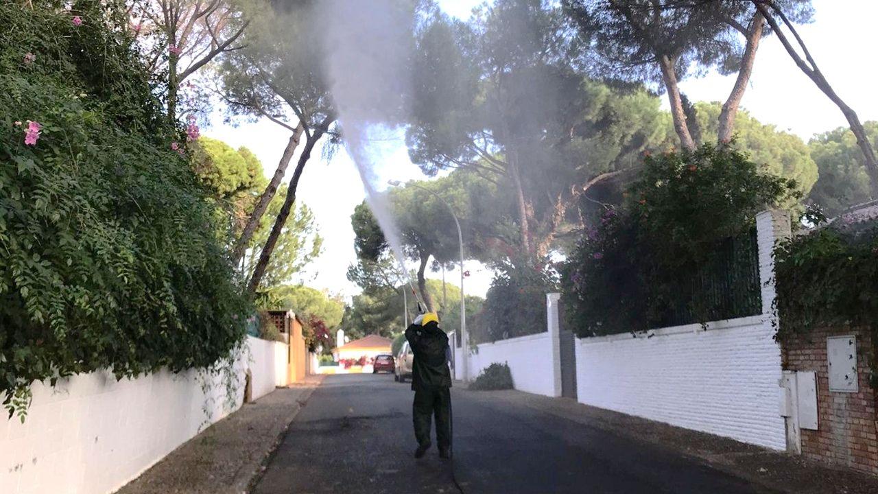 Un operario fumiga en una calle de Alcalá de Guadaira