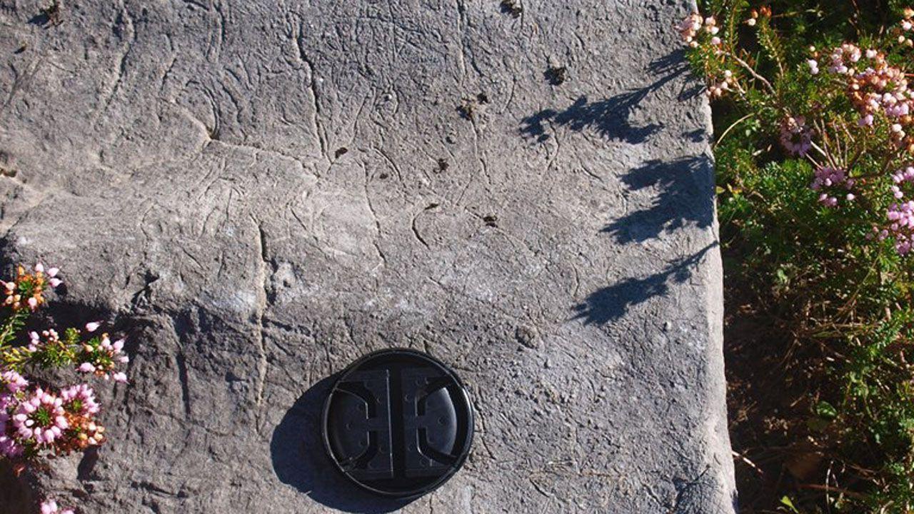 Este es el sorprendente descubrimientorealizado en los Picos de Europa.La presidenta del CSIC, Rosa Menéndez, y Carlos Paniceres, presidente de la Cámara de Comercio de Oviedo