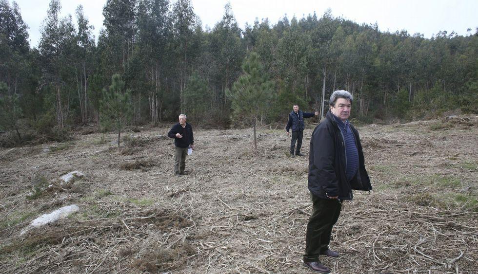 El de A Canicouva es el único terreno que baraja el gobierno local para la planta de compost.