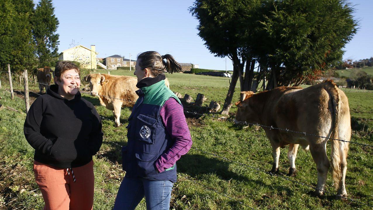La ganadera Gema Navia (izquierda) conversa con Silvia Rolle, controladora de campo de Acruga, junto a los bueyes que se crían en la explotación de Remourelle