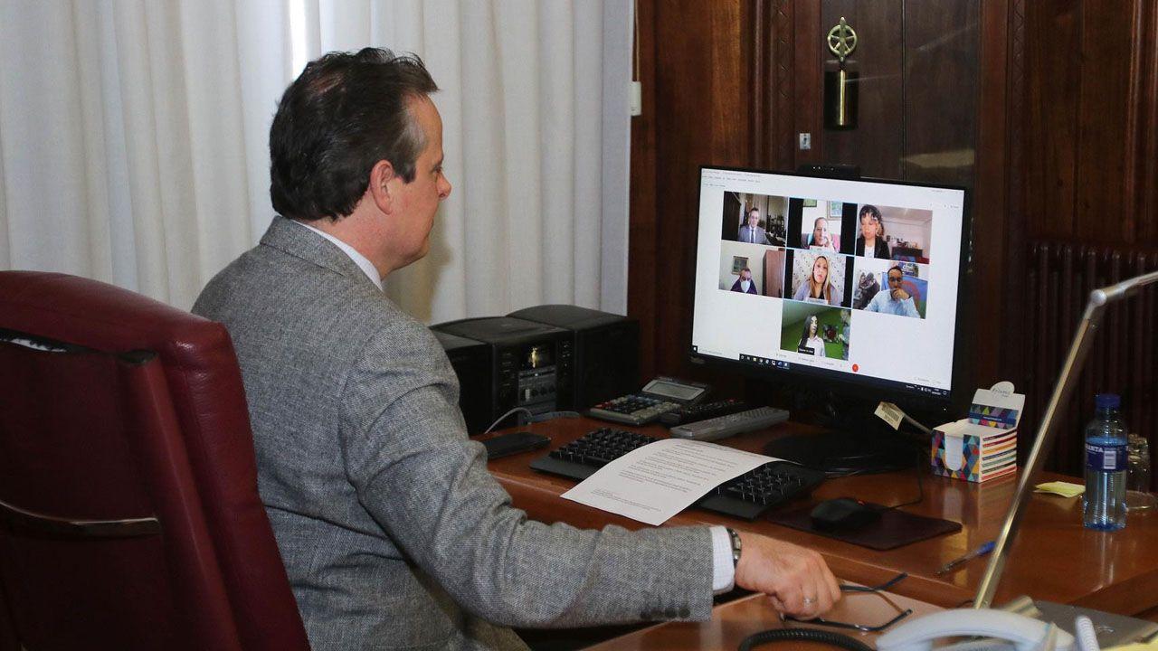 El presidente de la Junta, Marcelino Marcos, en la videoconferencia del Día del Pueblo Gitano. - JOSE VALLINA
