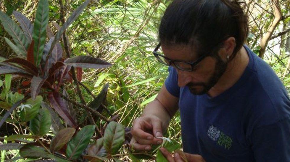 Cuando Facebook es motivo de despido.Carlos Magdalena, examinando un ejemplar de planta en Isla Mauricio