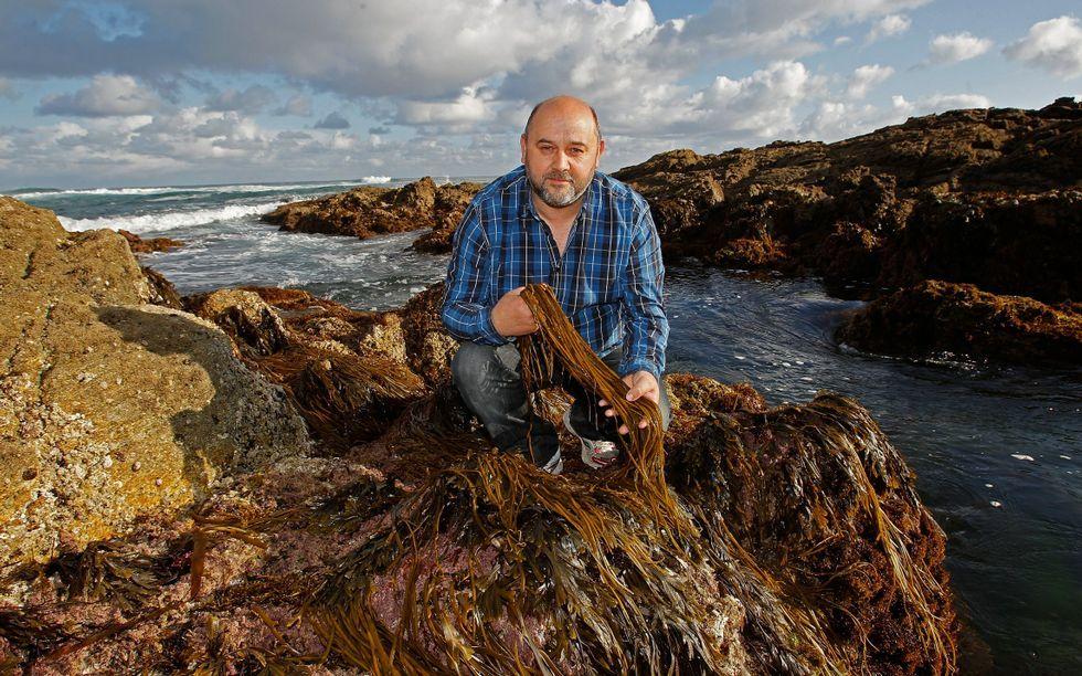 Antonio Muíños explicará mañana en Camariñas el proceso de recogida de algas.
