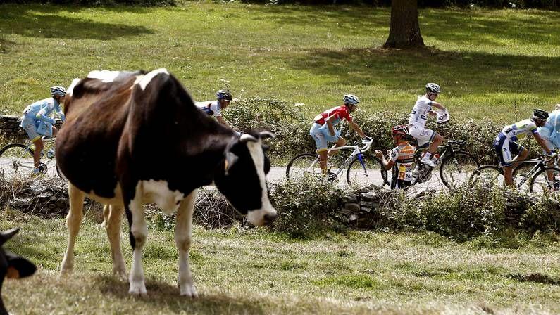 Arranca el Giro en las calles de Belfast.Lágrimas de Purito en el podio de Florencia