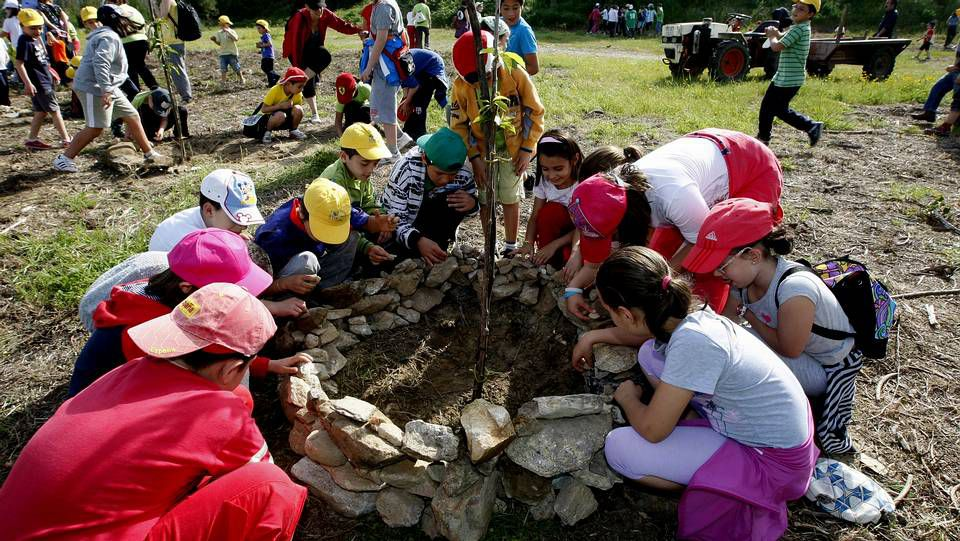 Los pequeños, de 3 a 6 años de edad, participaron en la plantación de más de 30 árboles de diversas especies en A Madroa.