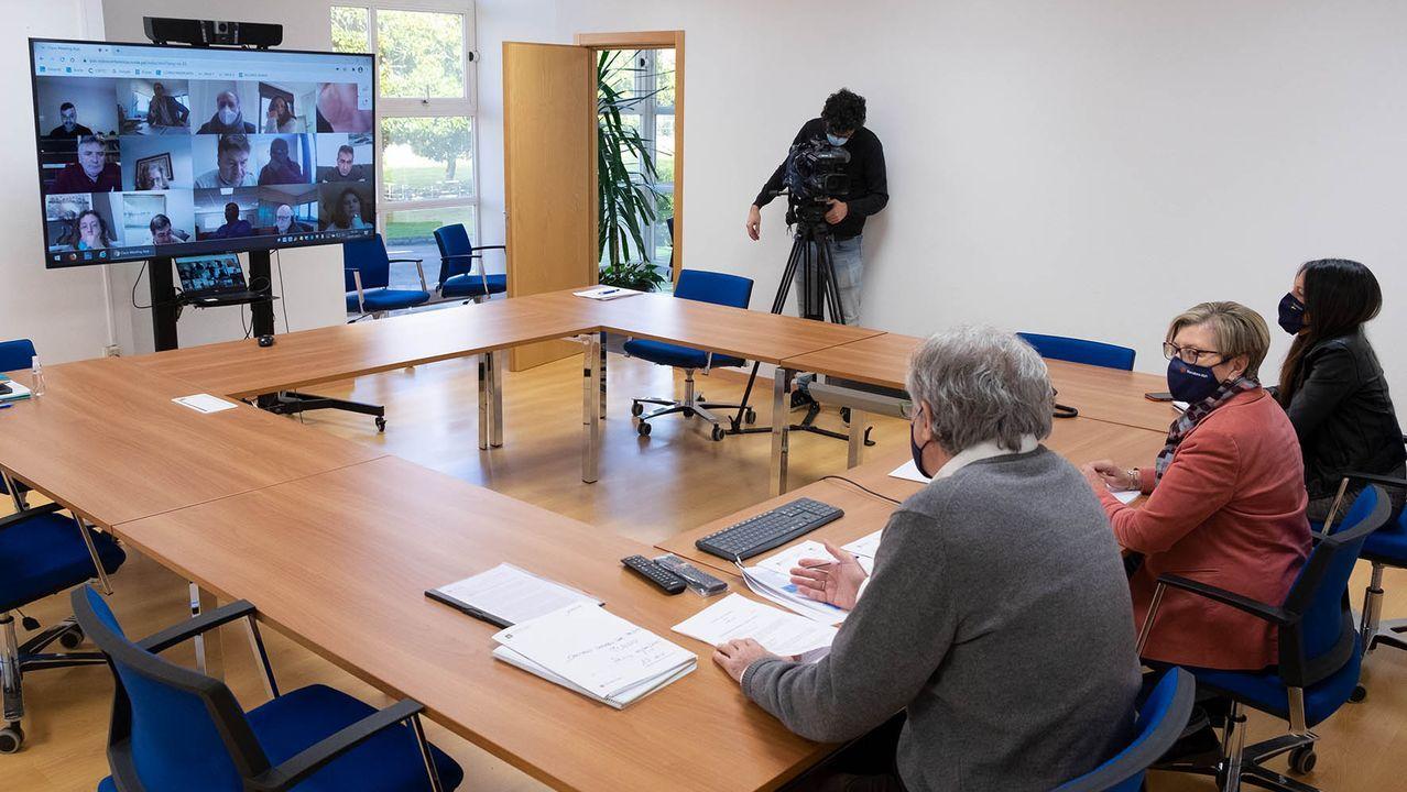 Un momento del pleno telemático del Consello Galego de Pesca, celebrado este martes en convocatoria extraordinaria y presidido por Rosa Quintana