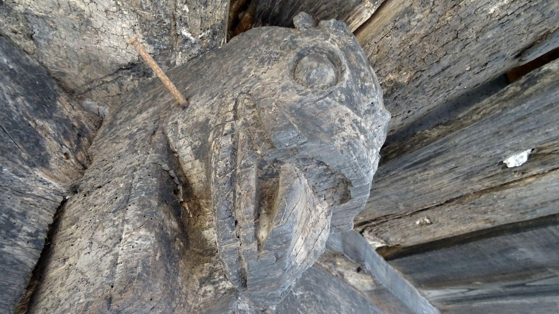 Otra vista de la cabeza de dragón, la única de la que se tiene constancia en Asturias