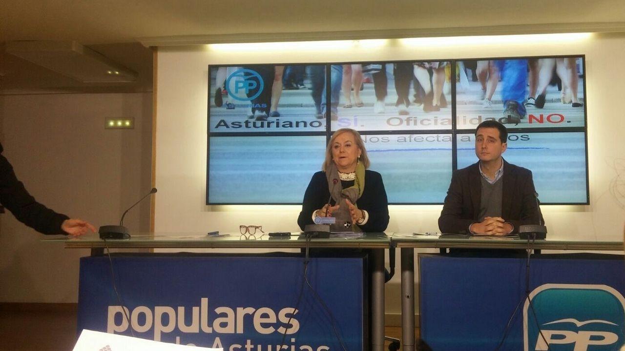 Mercedes Fernández (PP)
