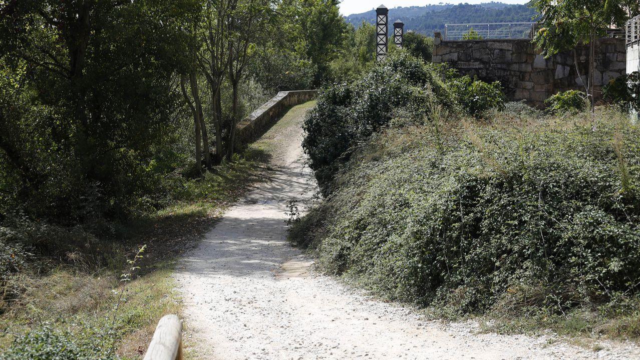 Zona de A Ponte