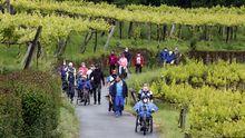 El Camino de Santiago renace tras el covid, así es una etapa de la ruta portuguesa.El local en el que se celebró la fiesta lleva cerrado desde septiembre del 2020 y en una de sus ventanas tiene un cartel de se alquila