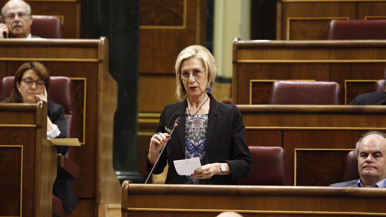 Rosa Díez, durante una intervención parlamentaria en el 2015