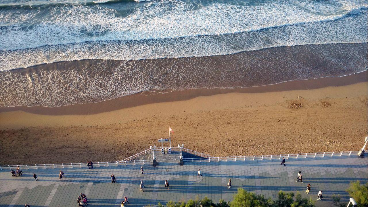Lucha a muerte entre calamares gigantes por peces.La playa de San Lorenzo y el paseo del Muro, en Gijón