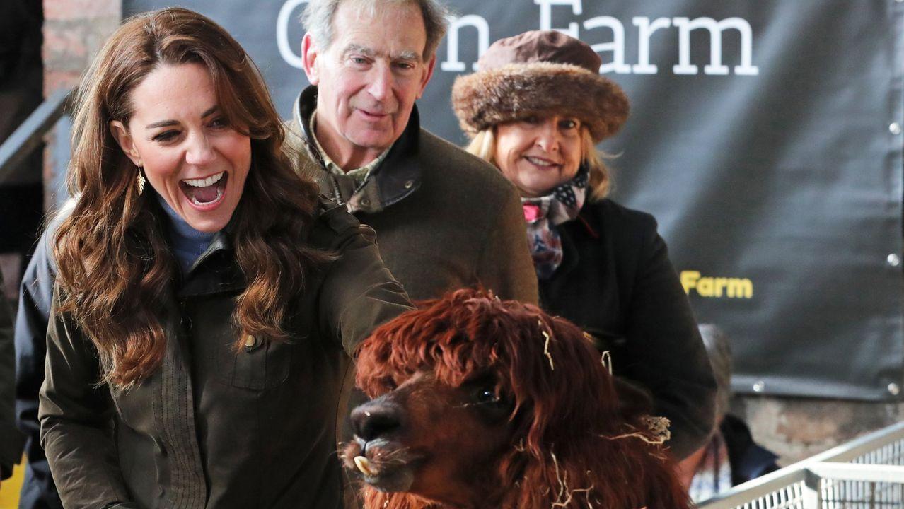 Kate Middleton estrena otoño con Massimo Dutti.Los cuñados siempre demostraron tener una gran sintonía entre ellos, como en esa imagen del año 2012