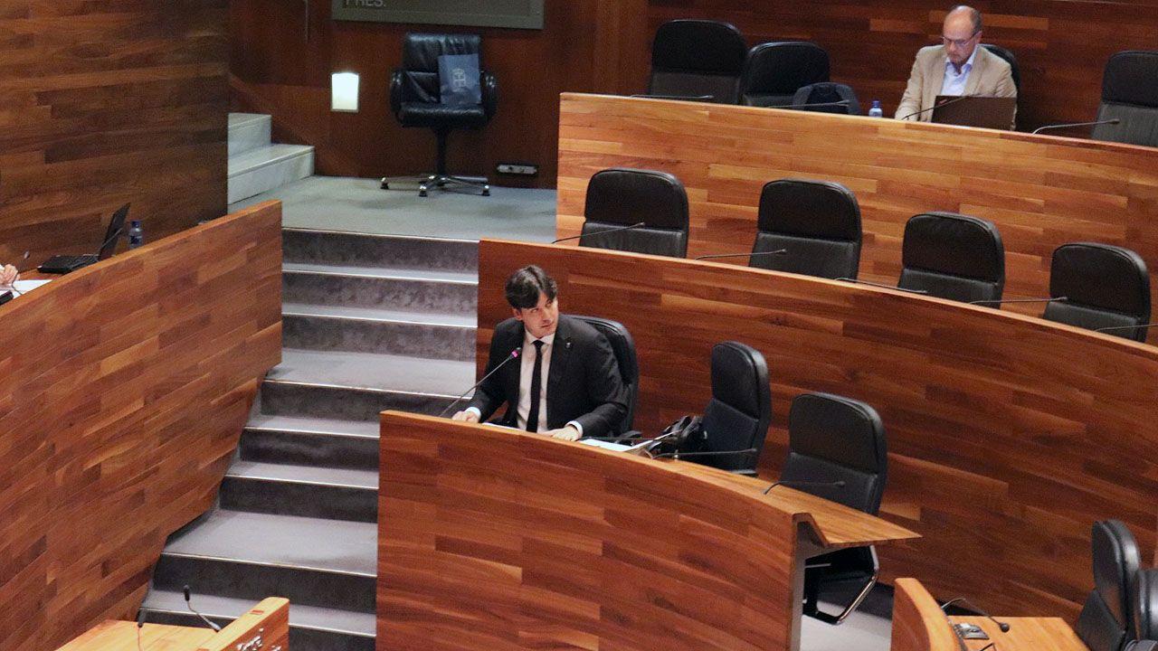 El consejero de Ciencia, Borja Sánchez, en la Junta General