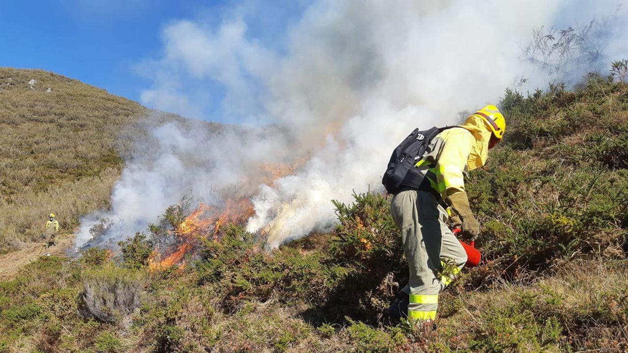 Técnicos forestales apagando un incendio en Asturias