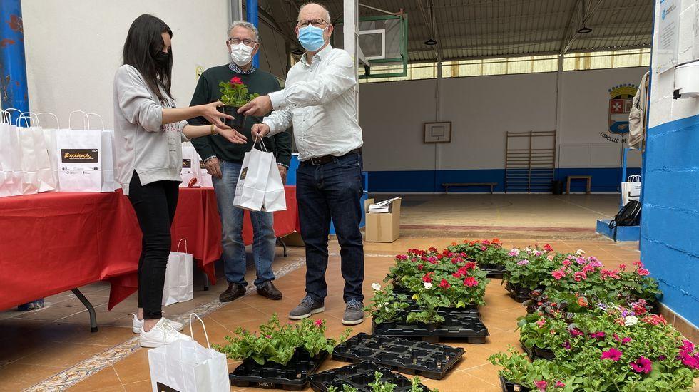 La entrega de plantas se llevó a cabo en el pabellón viejo