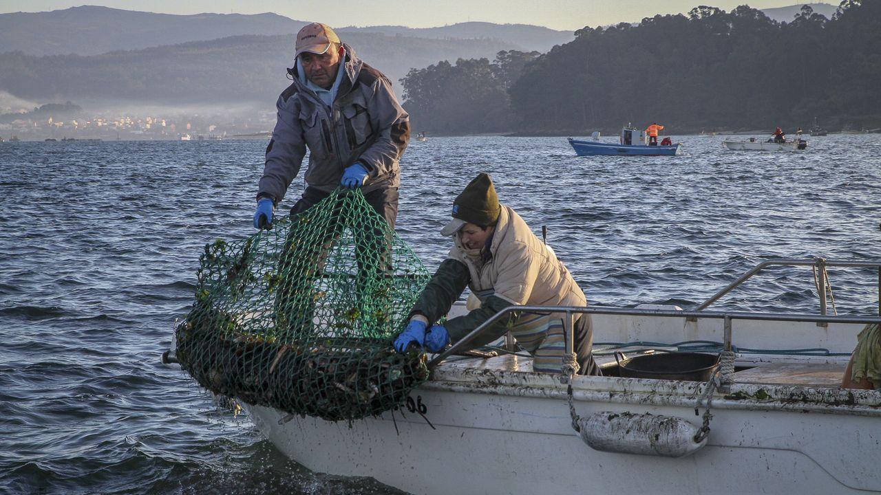 Tripulantes de la una de las catorce embarcaciones que salieron a faenar ayer, recogiendo el aparejo con el que capturan las ostras