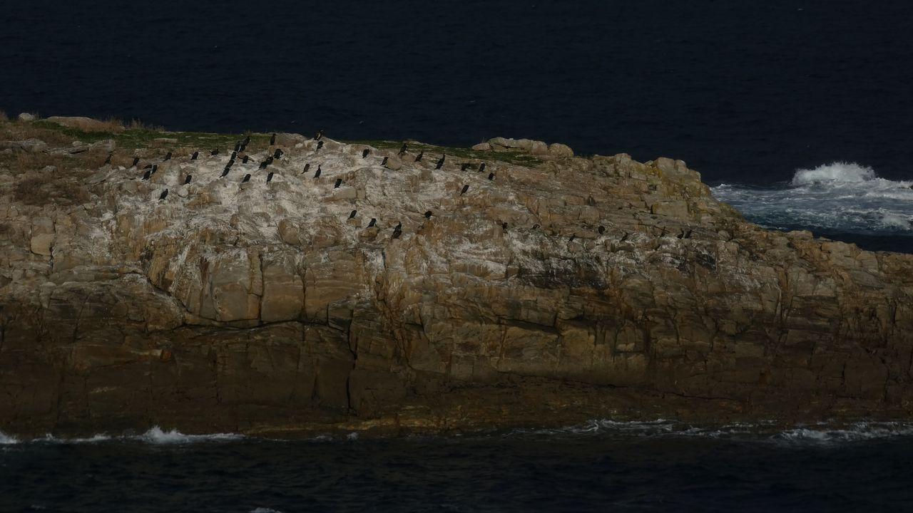 islas san pedro