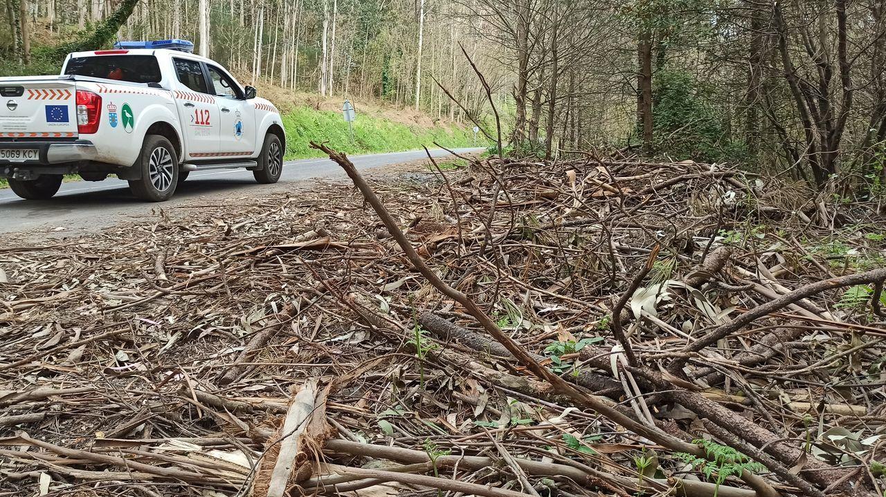 En las márgenes de la carretera se acumulan restos de las cortas realizadas, sobre todo, ramas y hojas