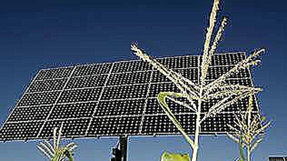 Panel solar en medio de un campo de maíz