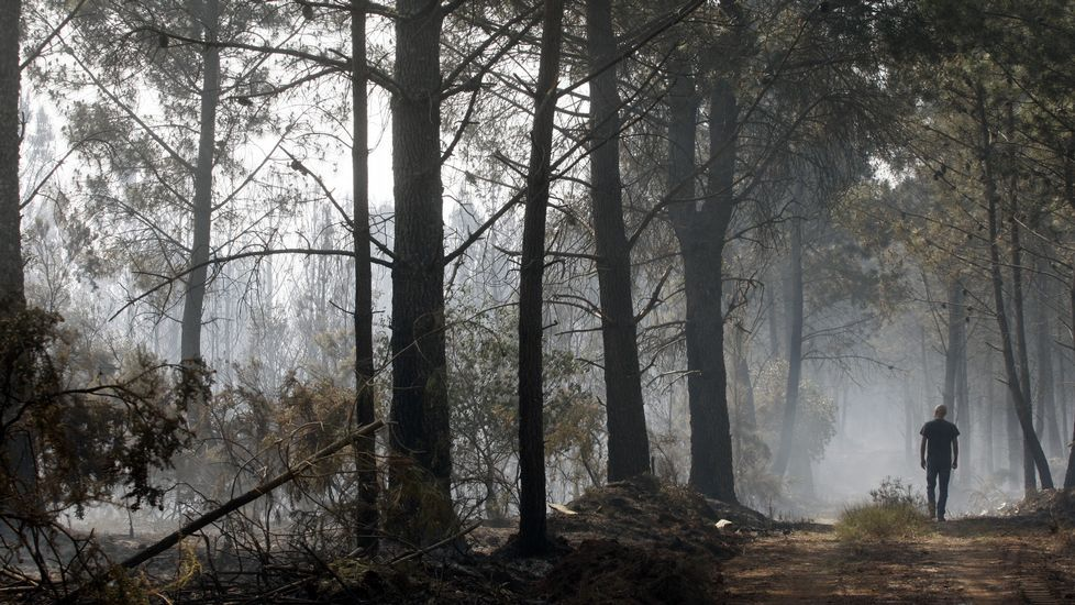 La Ruta do Ferro en imágenes.Incendio en Sober.