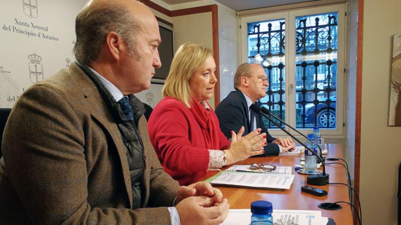 Mercedes Fernández interviene en el Comité Ejecutivo Regional del PP de Asturias.Luis Venta. Mercedes Fernández y José Agustín Cuervas Mons