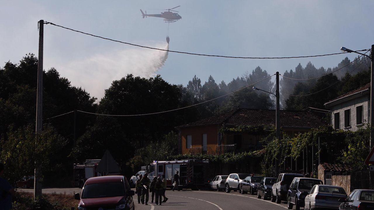 Incendio en A Gudiña.El alcalde de NIgrán y el presidente de la comunidad de montes de Chandebrito en una zona repoblada