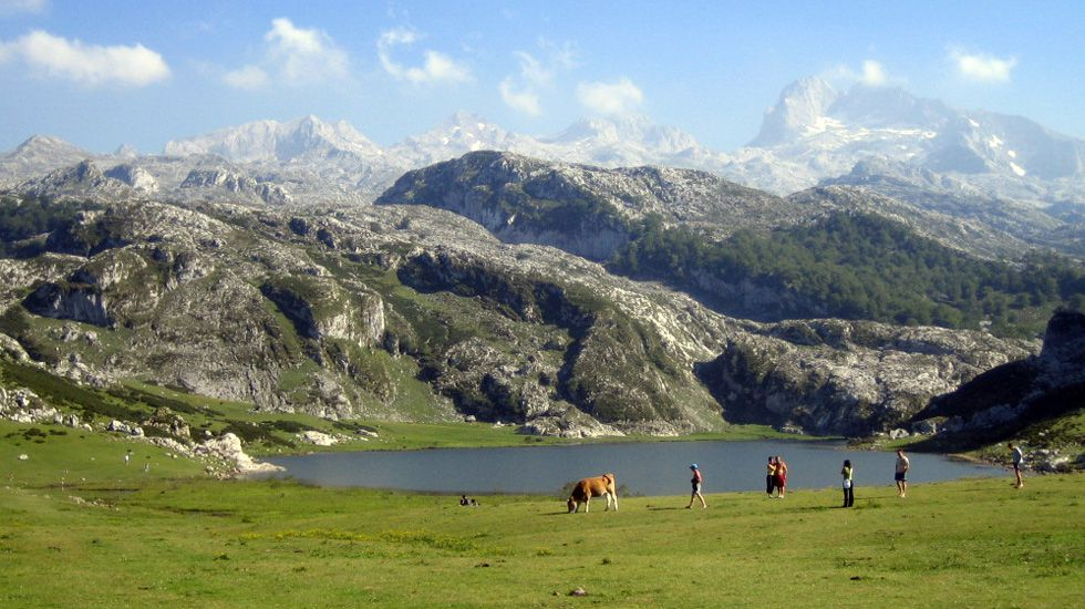 El lago Ercina, en Picos de Europa.El lago Ercina, en Picos de Europa