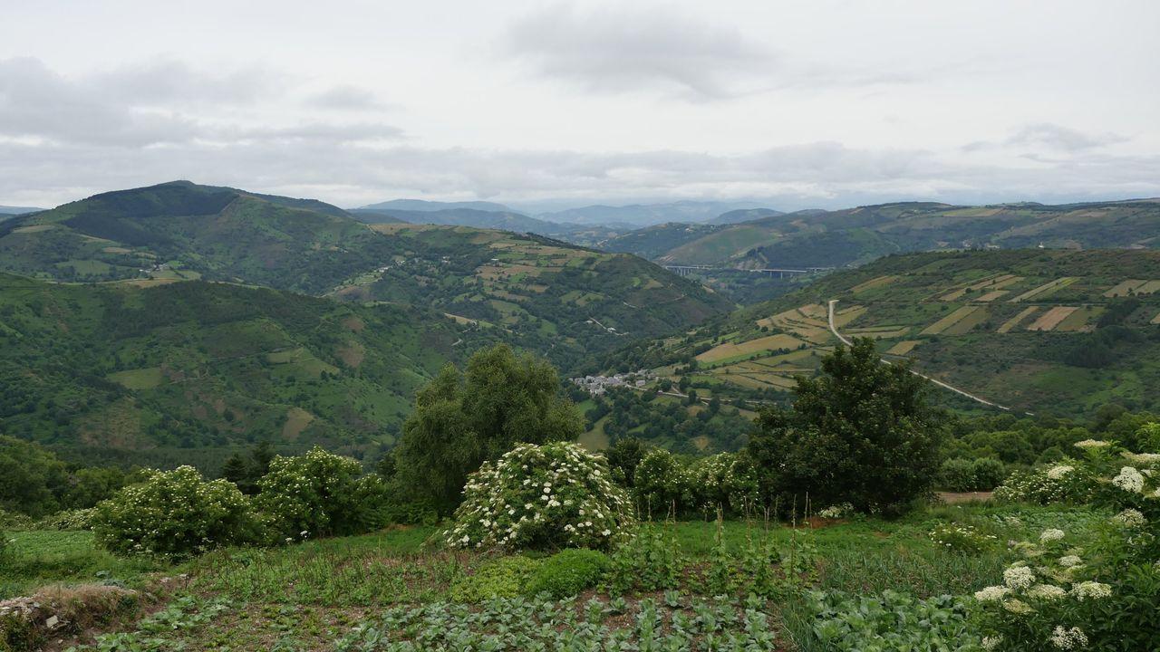 Ruta do Milagre. Una alternativa al Camino de Santiago con una dificultad baja y 4 kilómetros de recorrido.