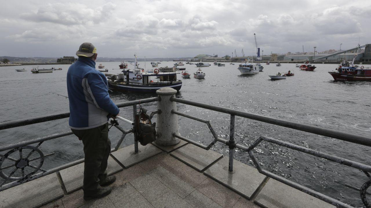 Protesta de los barcos de bajura en el puerto de A Coruña.Excavación en la zona del torreón