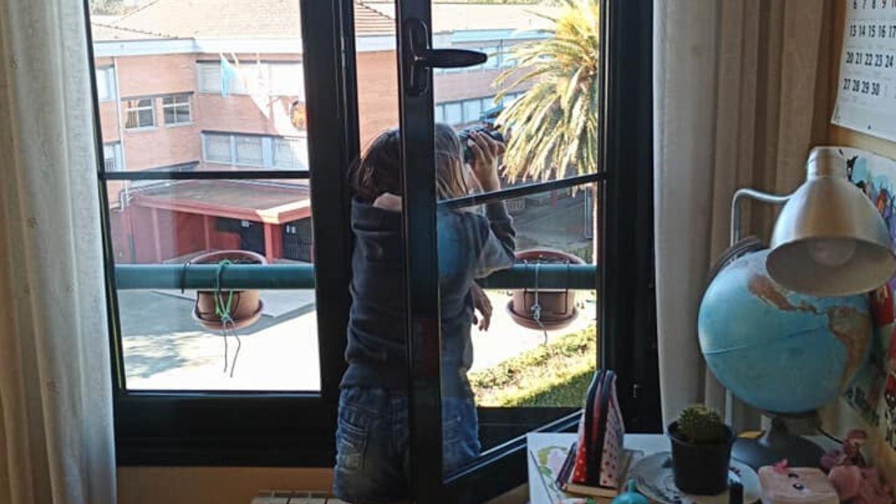Una niña observa pájaros desde la ventana de su habitación