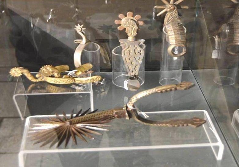 Colección de esporas.