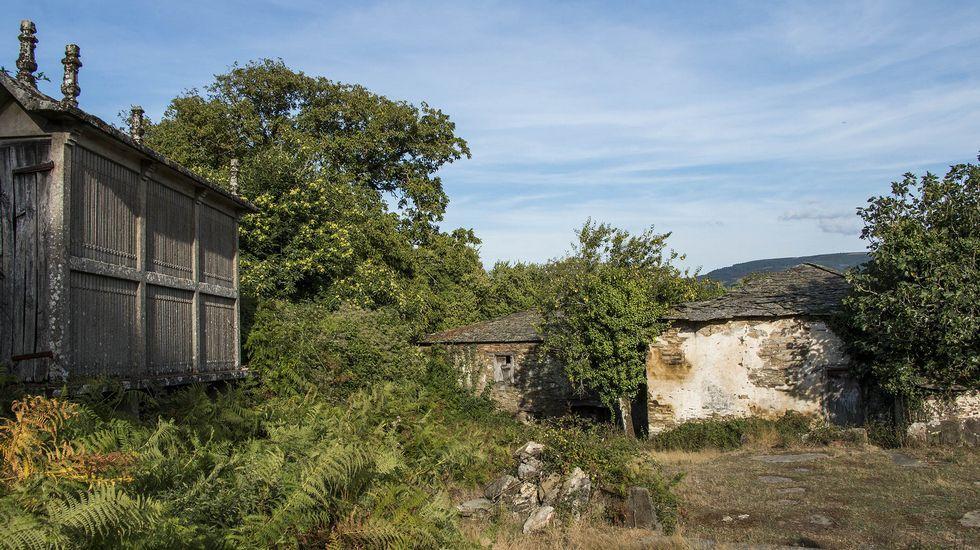 La abandonada Casa de Saavedra fue una importante vivienda señorial