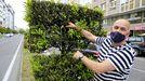 Alvino Carballés «caza» un enjambre de abejas en la Avenida das Americas
